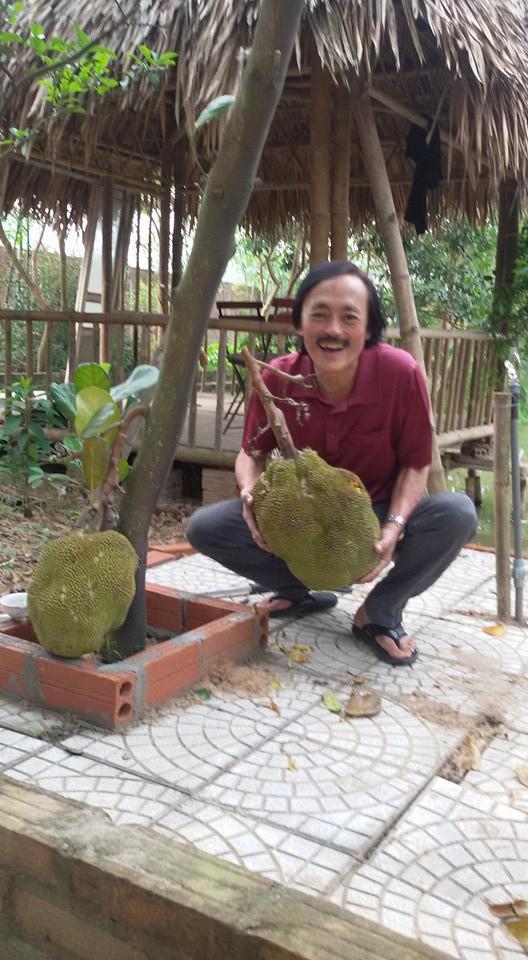 Nhà vườn 10.000m2 của nghệ sĩ Giang còi ngập hoa và trái cây Ảnh 7