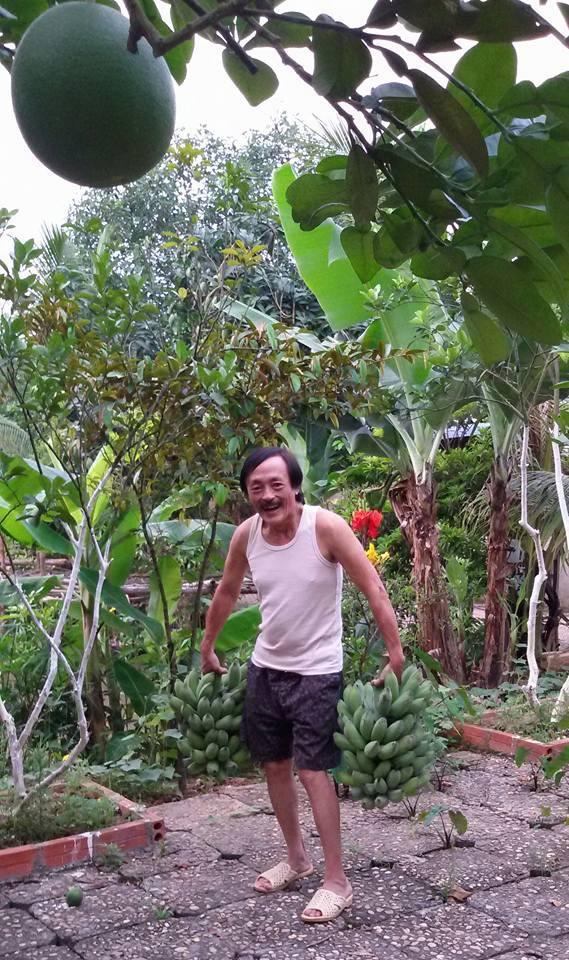 Nhà vườn 10.000m2 của nghệ sĩ Giang còi ngập hoa và trái cây Ảnh 6