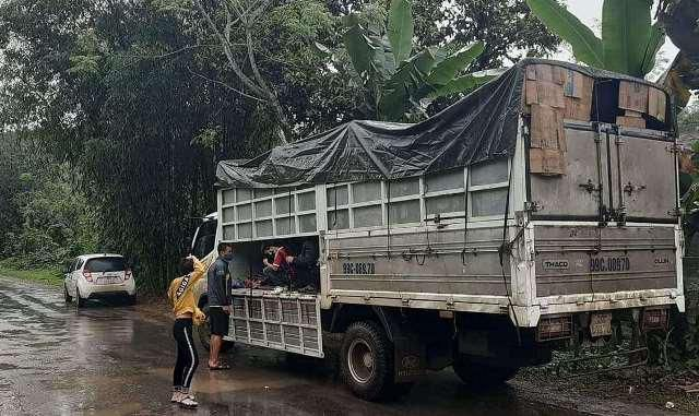Sốc: Phát hiện 15 người trốn trong xe tải để đi đám ma Ảnh 1