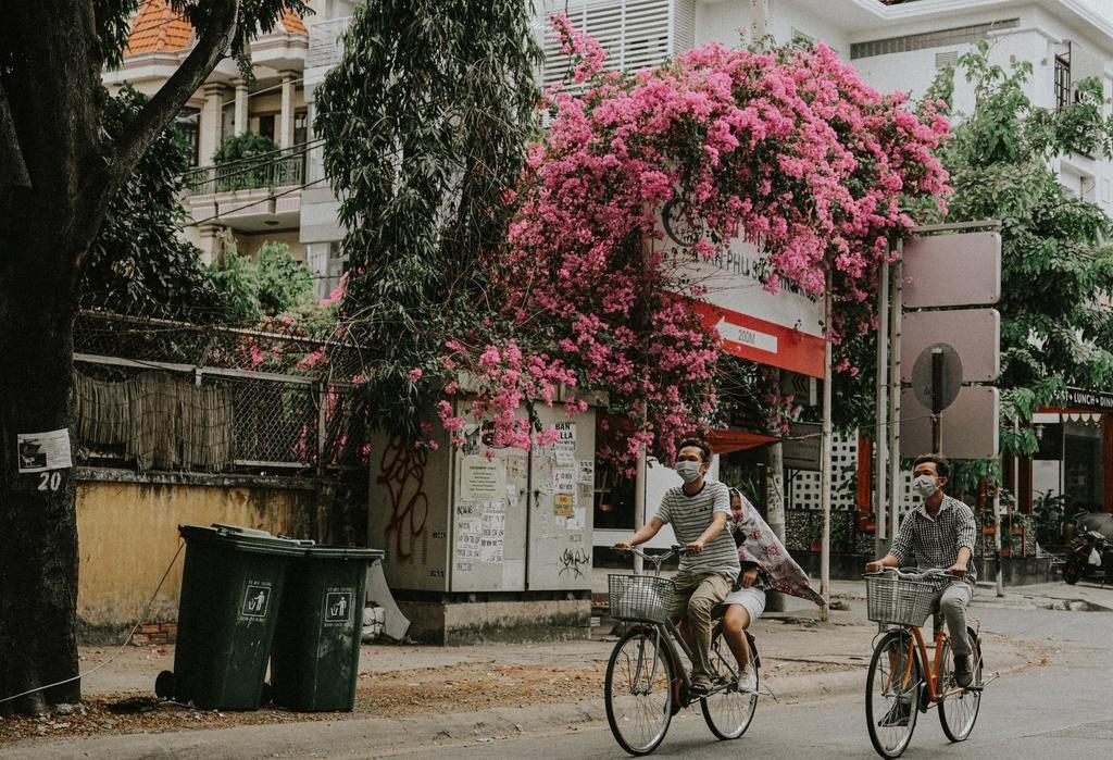 Hoa giấy khoe sắc trên góc phố Sài thành Ảnh 9