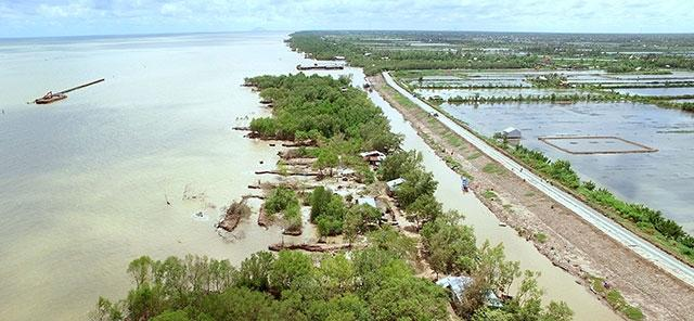 Khe nứt kéo dài trên đê biển Tây Cà Mau Ảnh 1