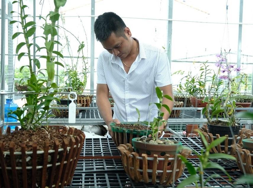 Ngắm vườn hoa lan đột biến, giá trị gần 10 tỷ đồng tại vùng hoa Mê Linh Ảnh 7