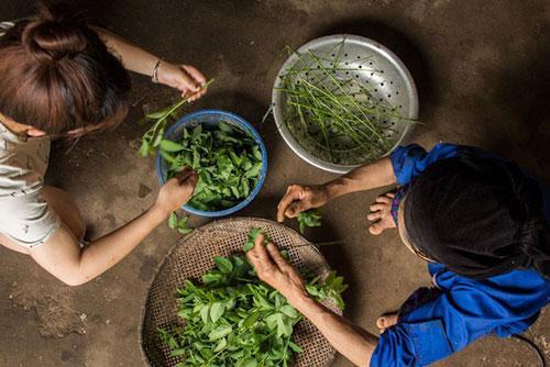 Cuộc sống bình dị ở bản làng Việt Nam qua ống kính khách Tây Ảnh 1