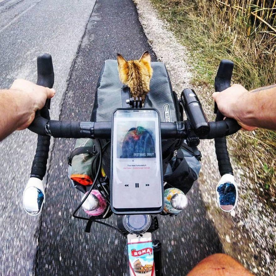 Thú vị câu chuyện chú mèo cùng anh thợ hàn đạp xe vòng quanh thế giới Ảnh 6