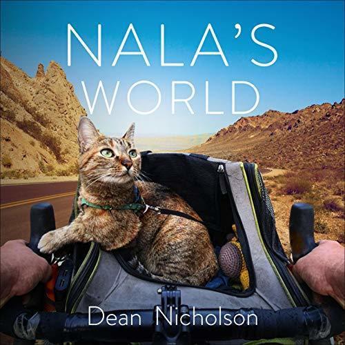Thú vị câu chuyện chú mèo cùng anh thợ hàn đạp xe vòng quanh thế giới Ảnh 5