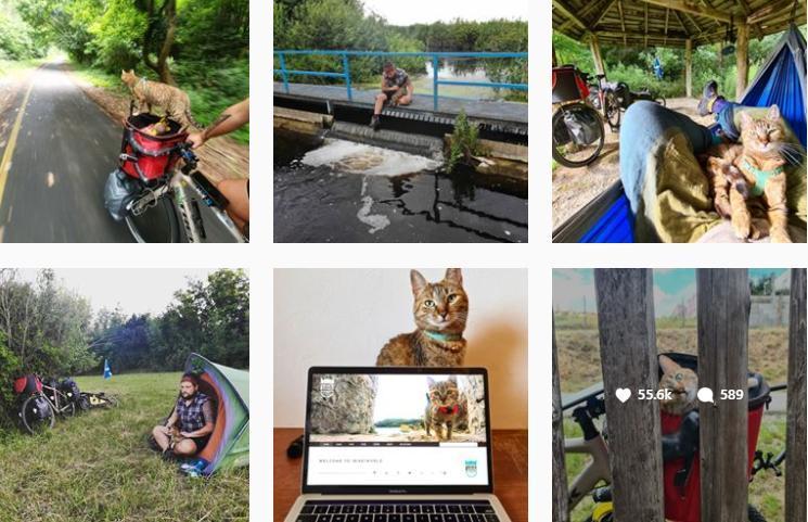 Thú vị câu chuyện chú mèo cùng anh thợ hàn đạp xe vòng quanh thế giới Ảnh 3
