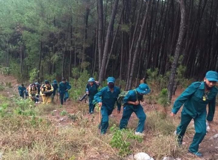 Cả nghìn người dập lửa đám cháy rừng lan qua nhiều xã ở Nghệ An Ảnh 3