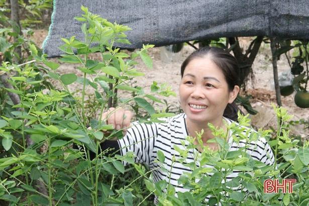 Người phụ nữ ở Hà Tĩnh 11 năm chăm sóc hàng xóm tật nguyền Ảnh 2