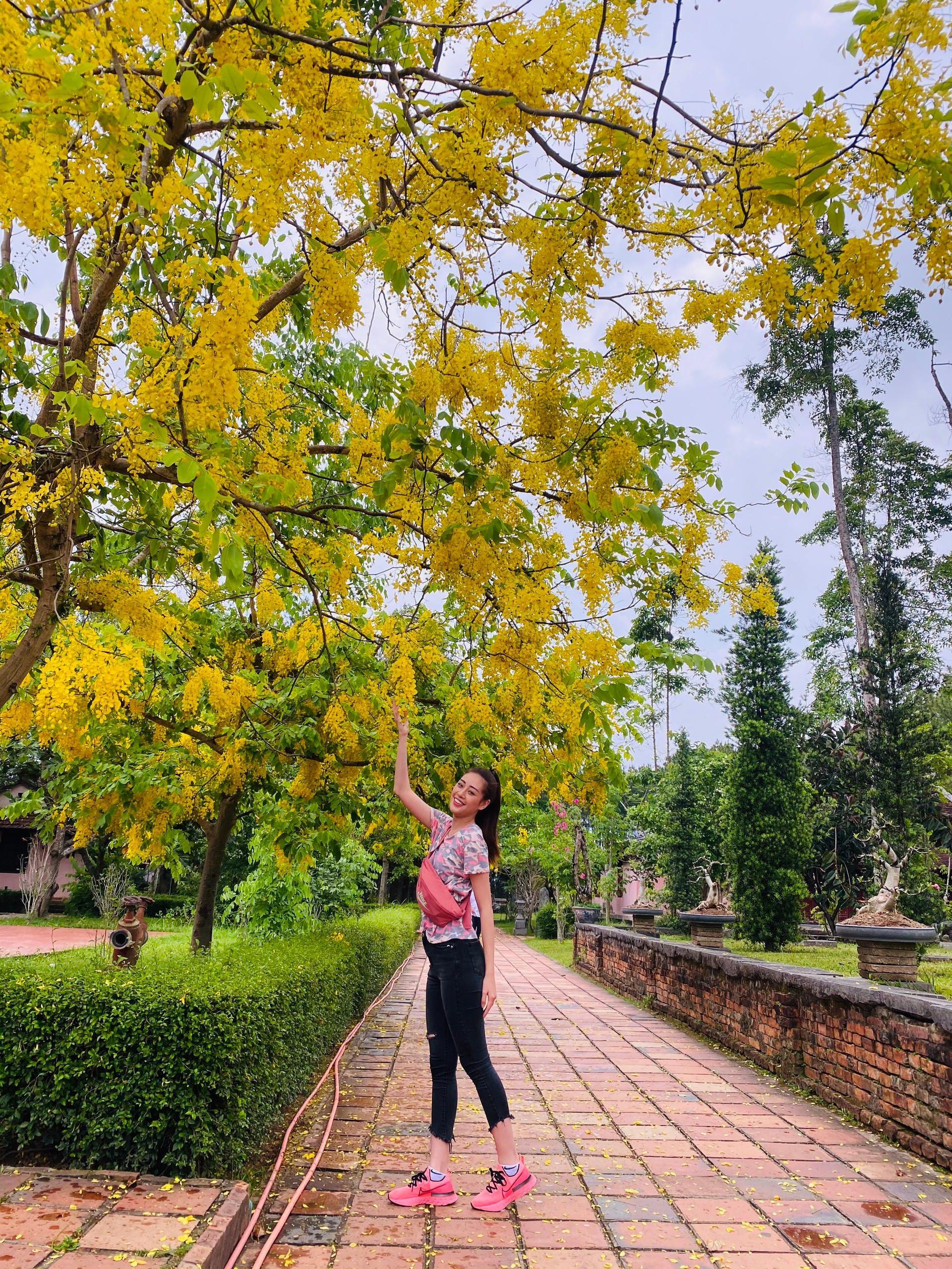 Hoa hậu Khánh Vân diện áo dài tím hóa thành cô gái xứ Huế Ảnh 8