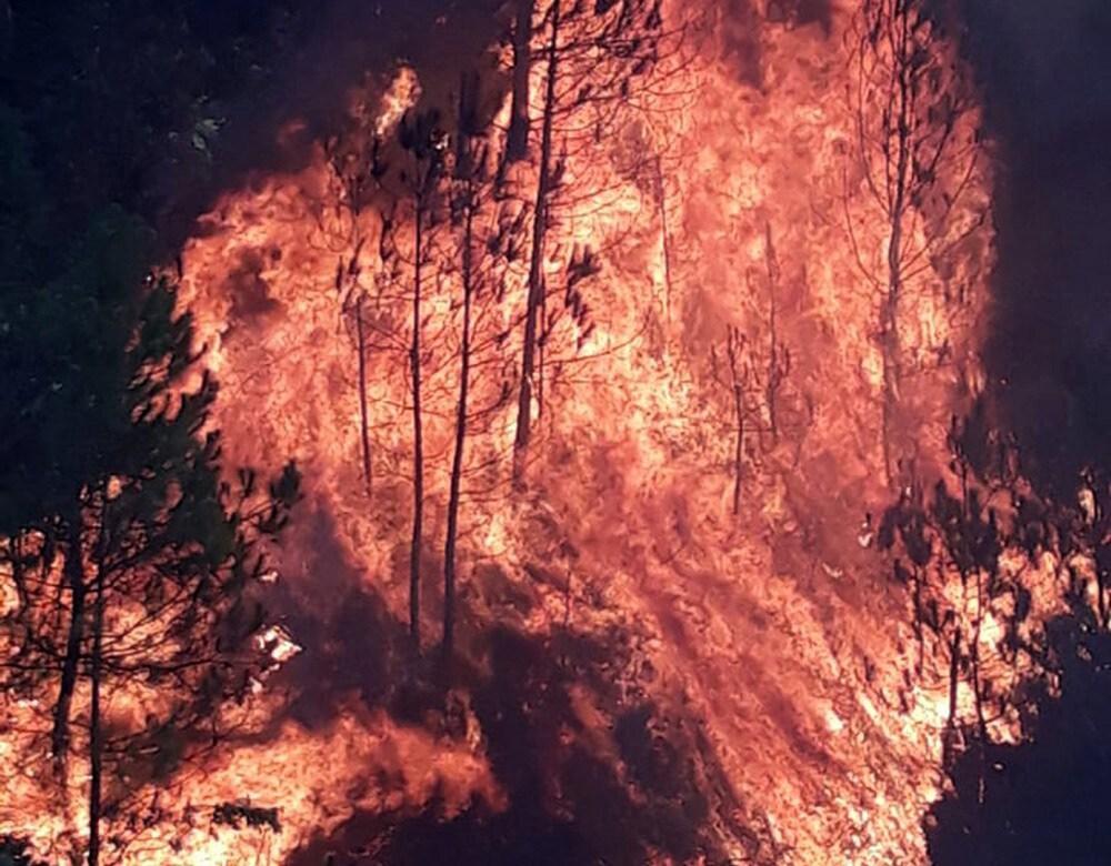 Liên tiếp xảy ra cháy rừng, Chủ tịch Nghệ An yêu cầu công an vào cuộc Ảnh 1