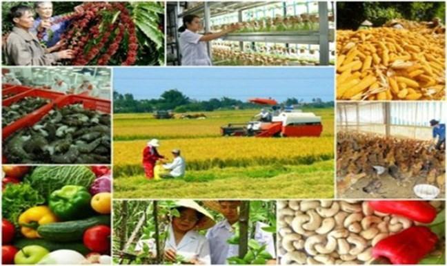 Lần đầu tiên tiến hành Điều tra nông thôn, nông nghiệp giữa kỳ Ảnh 1