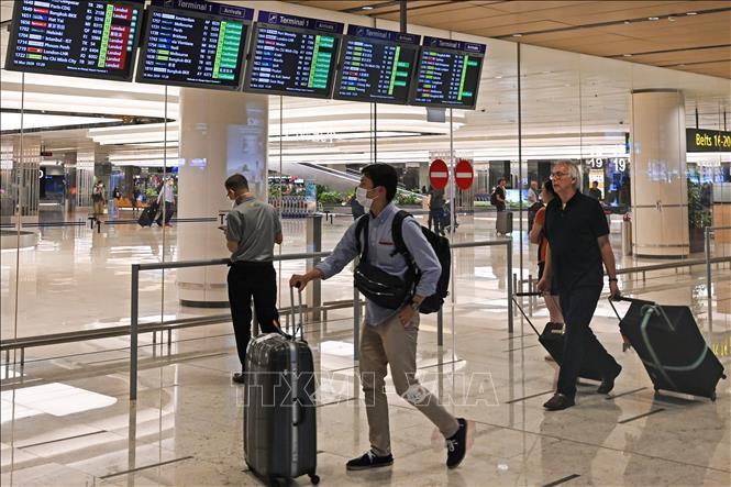 Singapore áp dụng các biện pháp bảo đảm hạn chế tiếp xúc tại sân bay Ảnh 1