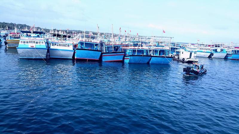 Đảo Phú Quý, điểm du lịch hấp dẫn phải đến ở Bình Thuận Ảnh 3