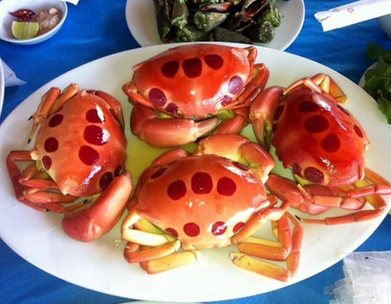 Đảo Phú Quý, điểm du lịch hấp dẫn phải đến ở Bình Thuận Ảnh 10
