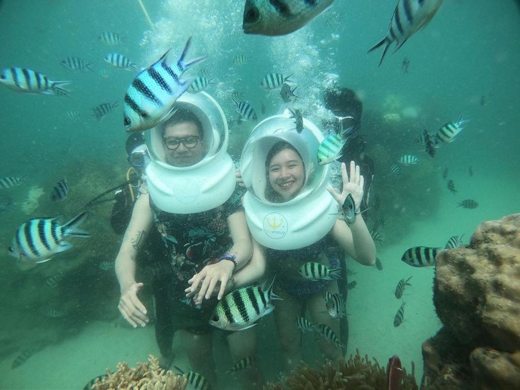 Trải nghiệm lặn biển ngắm san hô trên đảo ngọc Phú Quốc Ảnh 4