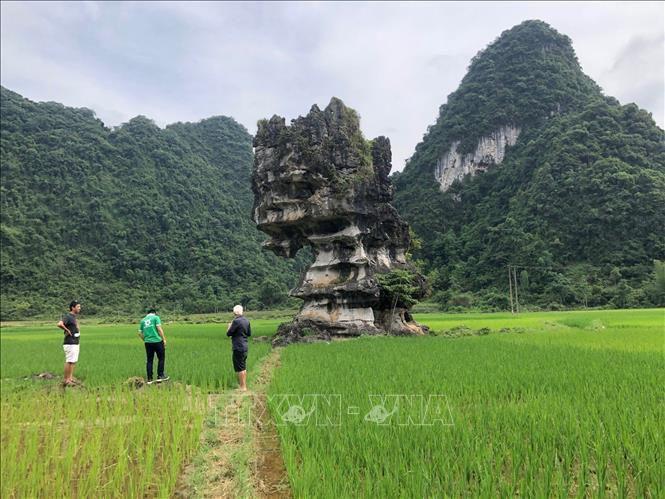 Đánh giá khảo sát Công viên địa chất toàn cầu UNESCO Non nước Cao Bằng Ảnh 1