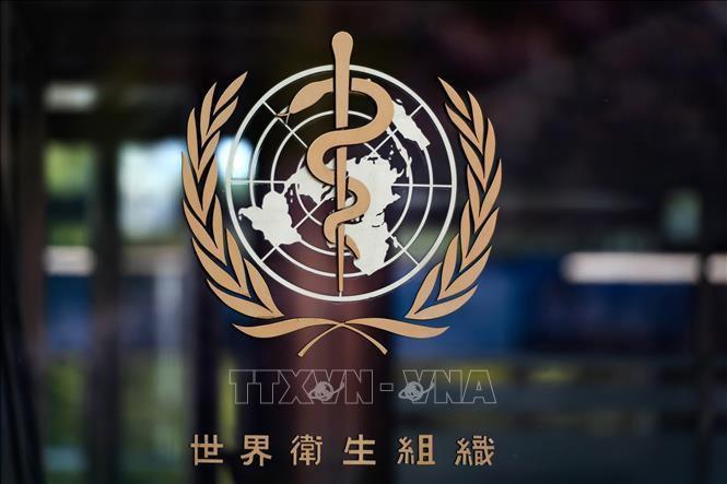 WHO đang giám sát trường hợp bệnh dịch hạch tại Trung Quốc Ảnh 1