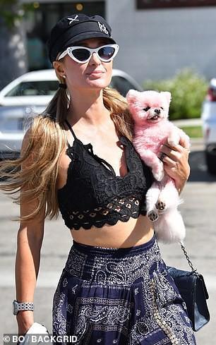 'Cô đào' Paris Hilton mặc bra nóng bỏng, ôm thú cưng ra phố ở Malibu Ảnh 3