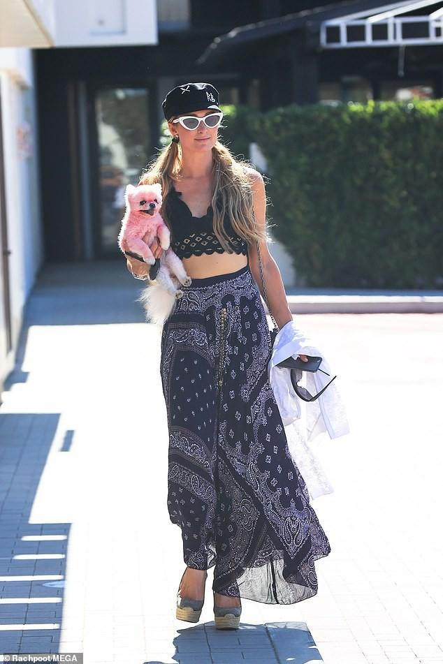 'Cô đào' Paris Hilton mặc bra nóng bỏng, ôm thú cưng ra phố ở Malibu Ảnh 4