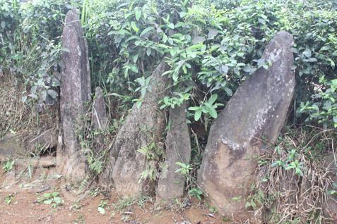 Nghĩa địa bí ẩn chôn những người bị hổ vồ bên sông Mã Ảnh 1