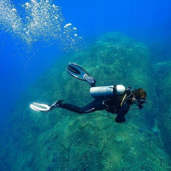 Trải nghiệm lặn biển ngắm san hô ở đảo Cù Lao Chàm Ảnh 6
