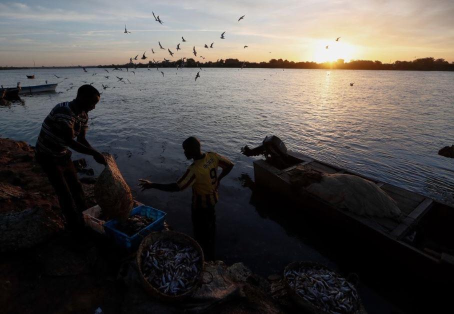 Đập Đại Phục Hưng lớn nhất châu Phi, gây lo ngại cho cư dân sông Nile Ảnh 5