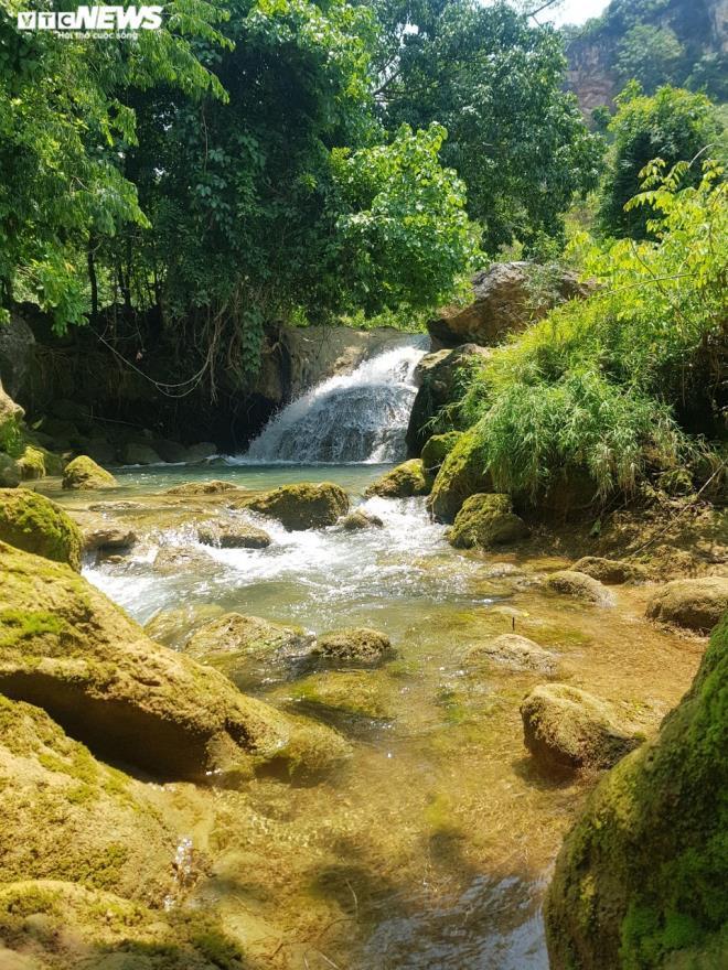 Kỳ lạ con suối chảy qua rừng già có khả năng biến nhiệt ở Mộc Châu Ảnh 2