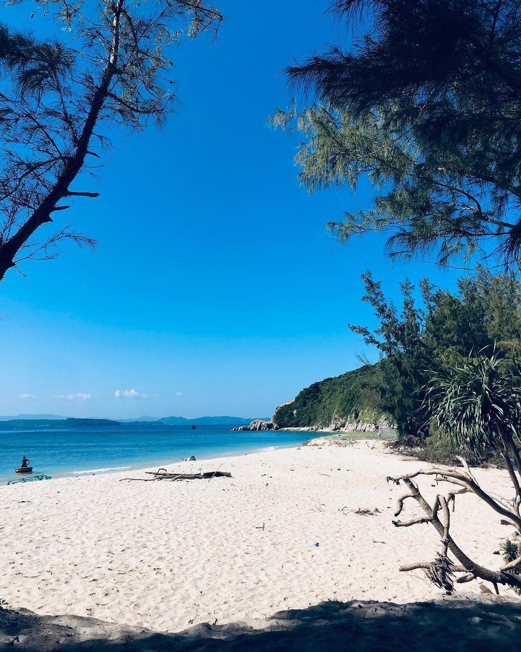 Hè này lập kèo vi vu 4 đảo cù lao tuyệt đẹp ở miền Trung Ảnh 15