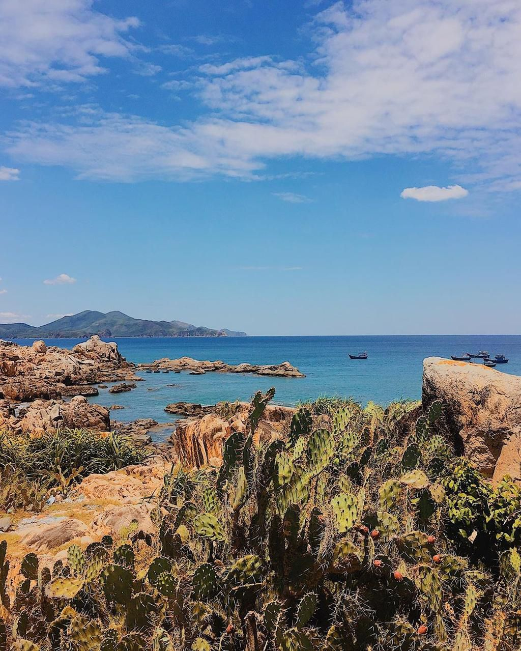 Hè này lập kèo vi vu 4 đảo cù lao tuyệt đẹp ở miền Trung Ảnh 13
