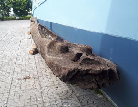 Thuyền độc mộc cổ nằm dưới đáy dòng Ngàn Sâu Ảnh 1