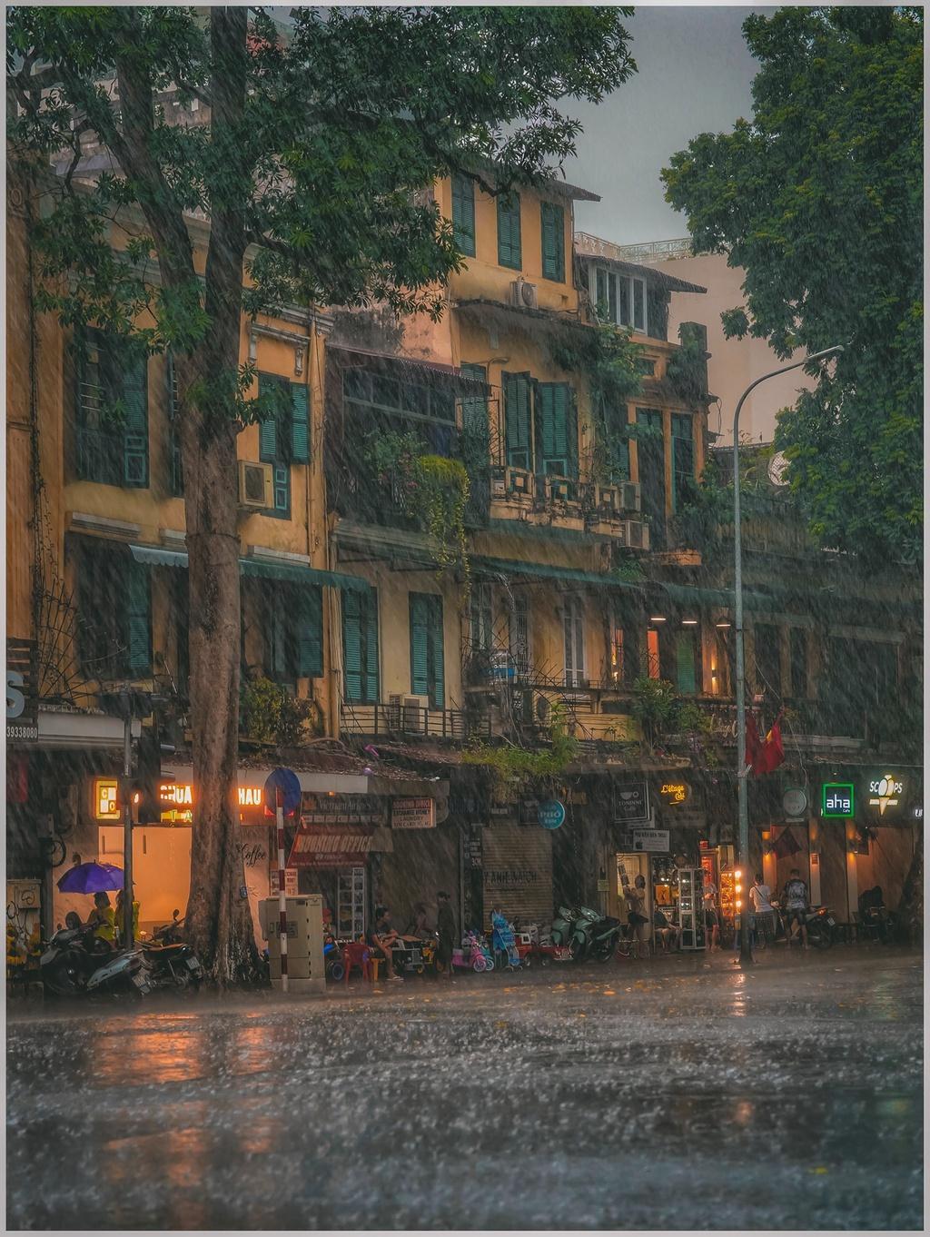 Bức tranh Hà Nội dưới cơn mưa vội ngày cuối tuần Ảnh 5