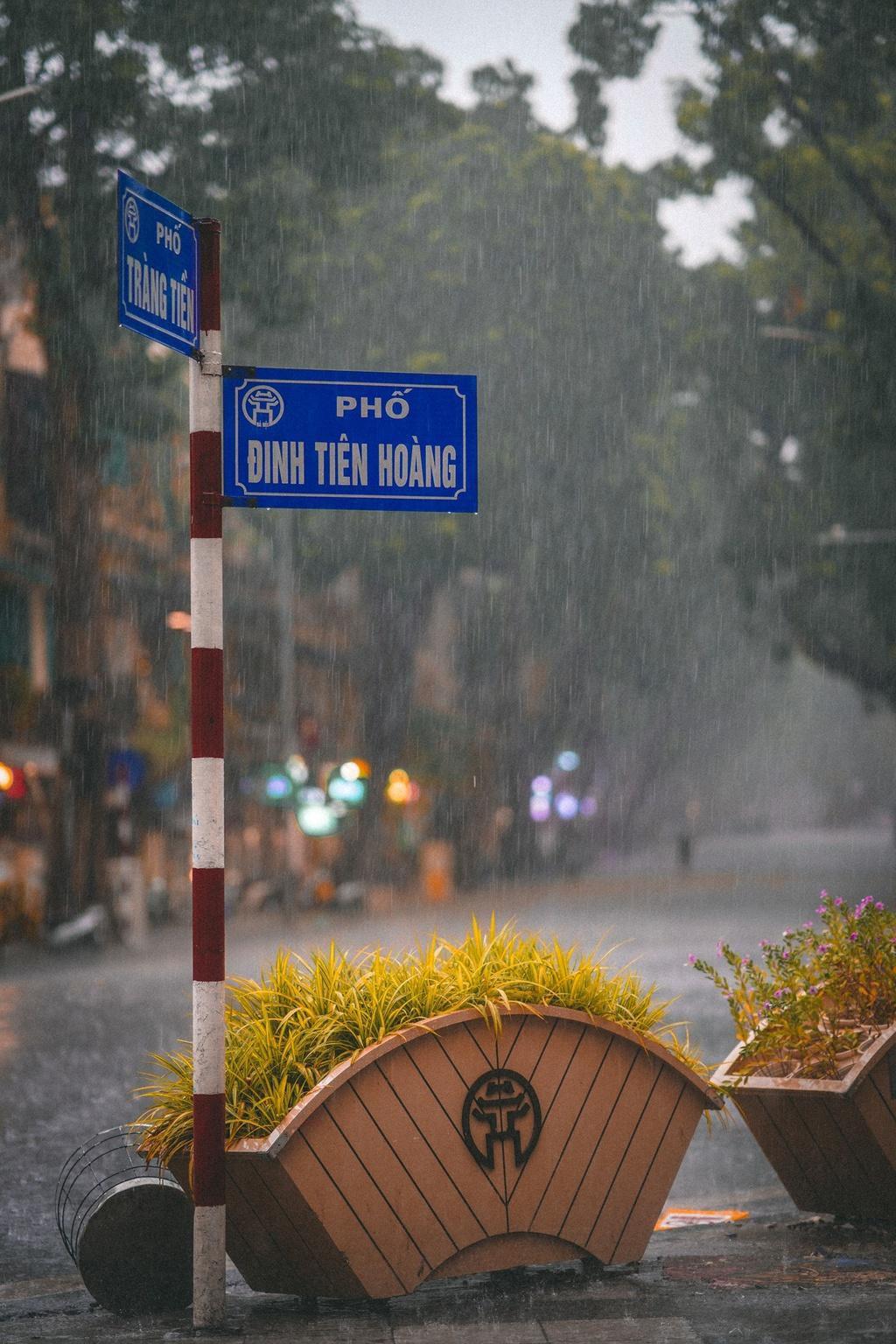 Bức tranh Hà Nội dưới cơn mưa vội ngày cuối tuần Ảnh 8