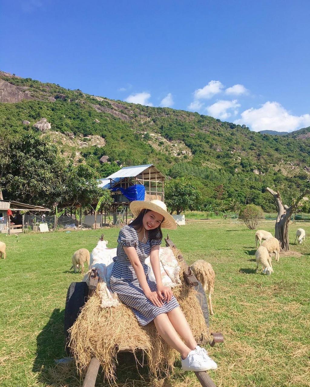 Lạc vào miền quê châu Âu tại 4 đồng cừu Việt Nam Ảnh 6