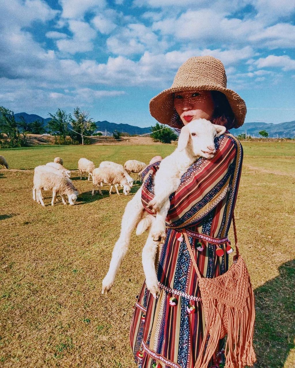 Lạc vào miền quê châu Âu tại 4 đồng cừu Việt Nam Ảnh 4