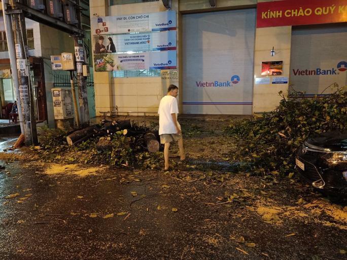 Mưa lớn, cây cổ thụ gãy đổ trúng nhiều người, đè bẹp xe ô tô Ảnh 2