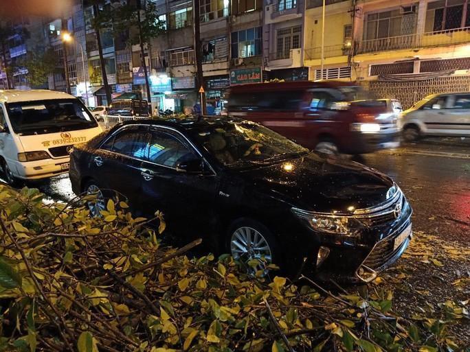 Mưa lớn, cây cổ thụ gãy đổ trúng nhiều người, đè bẹp xe ô tô Ảnh 3