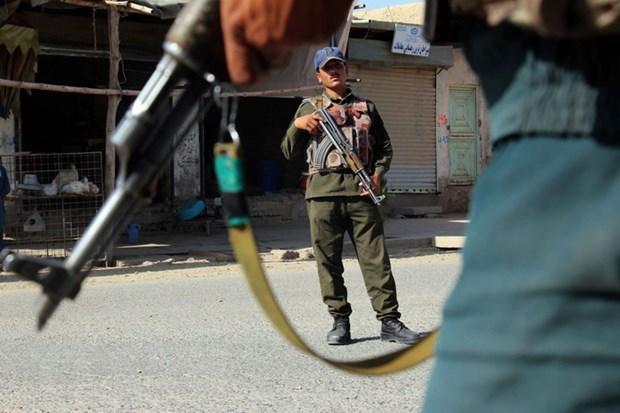Lệnh ngừng bắn ở Afghanistan bắt đầu có hiệu lực Ảnh 1