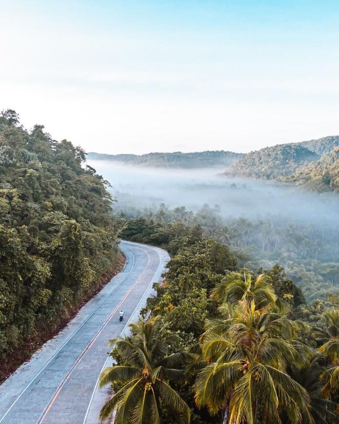 Đường xuyên rừng dừa hút khách vì thẳng như kẻ chỉ Ảnh 2