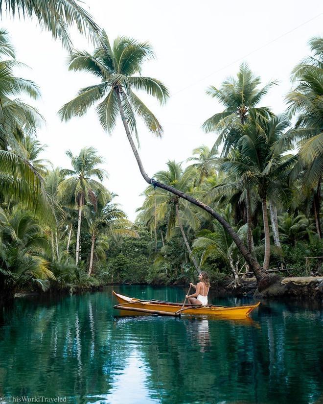 Đường xuyên rừng dừa hút khách vì thẳng như kẻ chỉ Ảnh 10