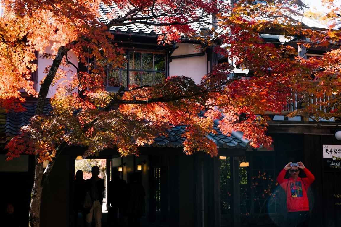 Yufuin, ngôi làng cổ tích ở Nhật Bản Ảnh 26