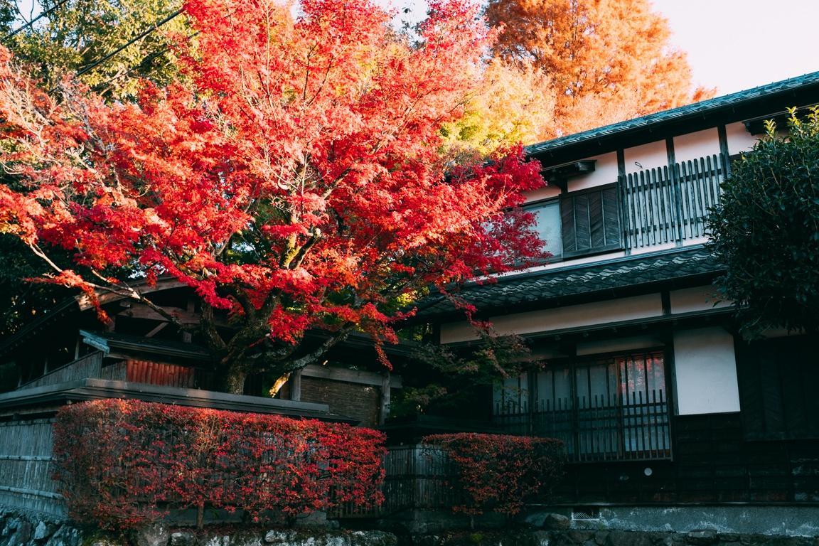Yufuin, ngôi làng cổ tích ở Nhật Bản Ảnh 29