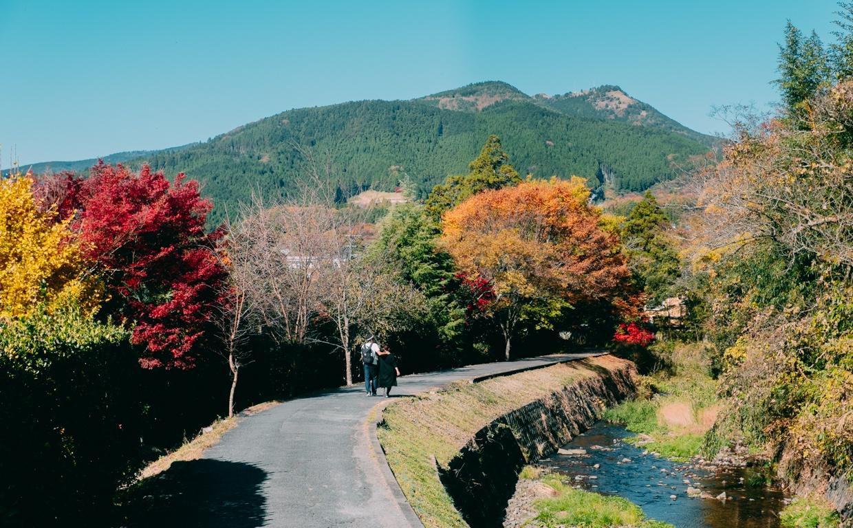 Yufuin, ngôi làng cổ tích ở Nhật Bản Ảnh 28