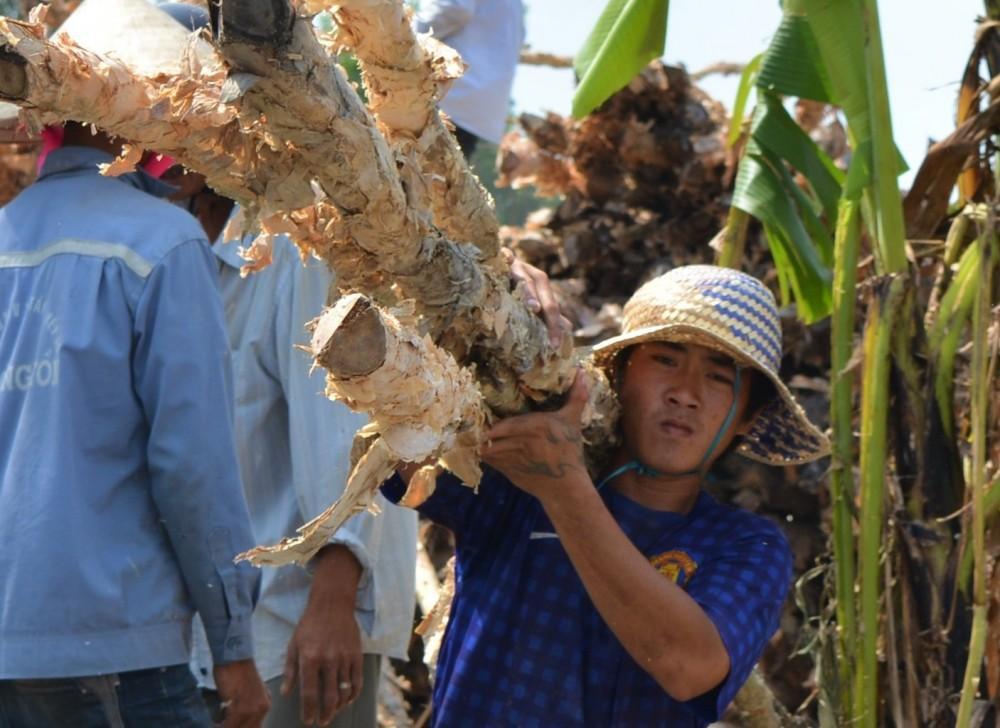 Độc đáo 'chợ tràm' trên vùng đất cuối trời Tổ quốc Ảnh 8