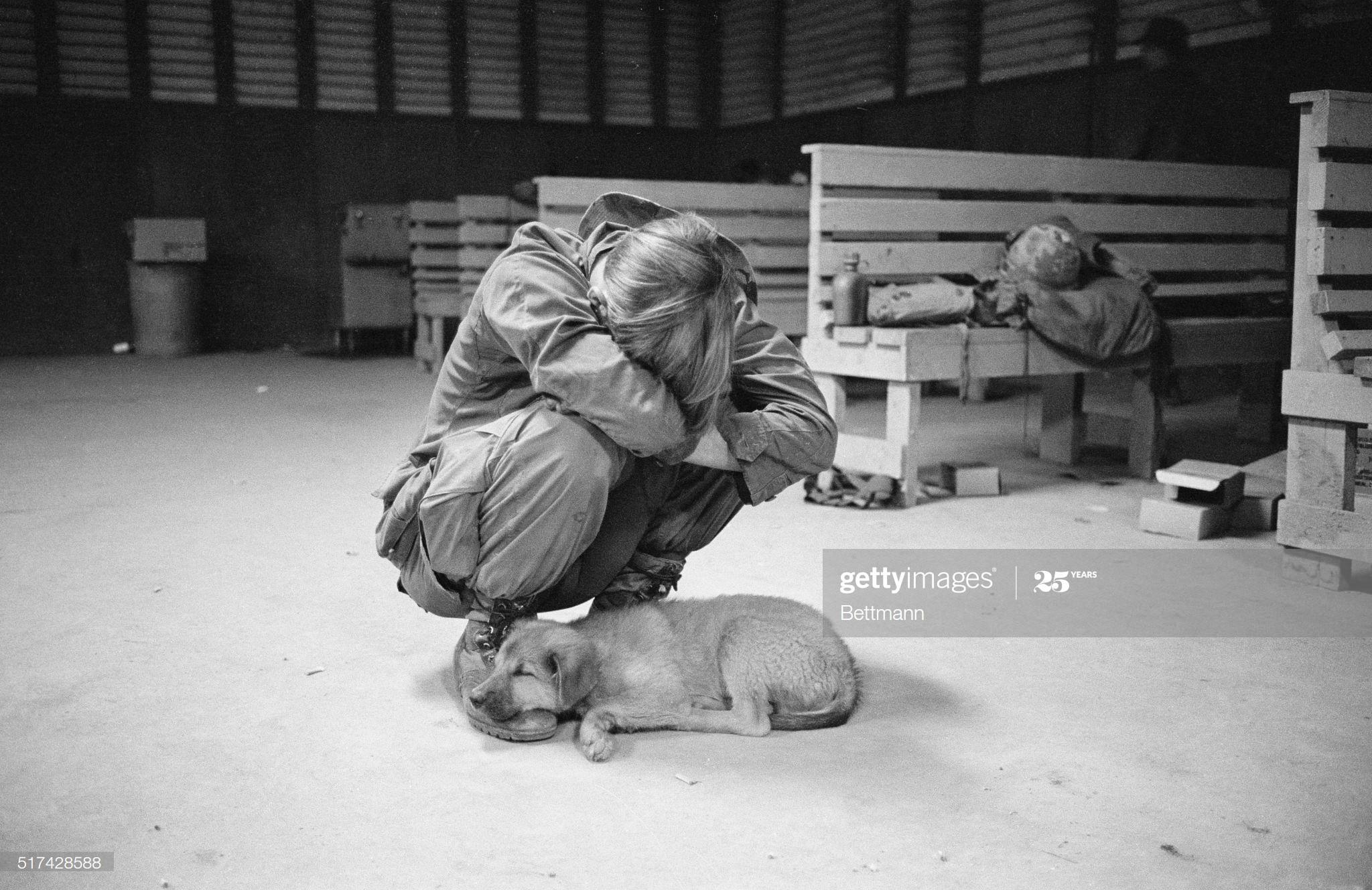Ảnh độc: Giấc ngủ của lính Mỹ trong chiến tranh Việt Nam Ảnh 2