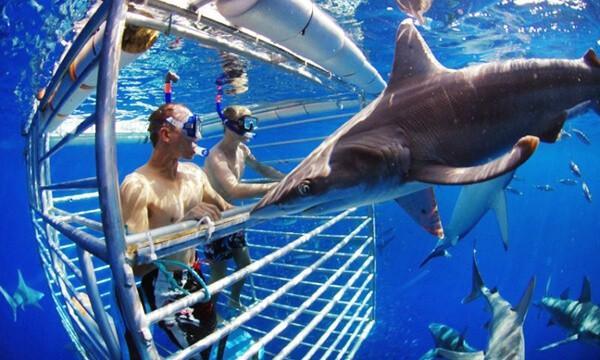 10 trải nghiệm du lịch mạo hiểm không phải ai cũng dám thử Ảnh 8