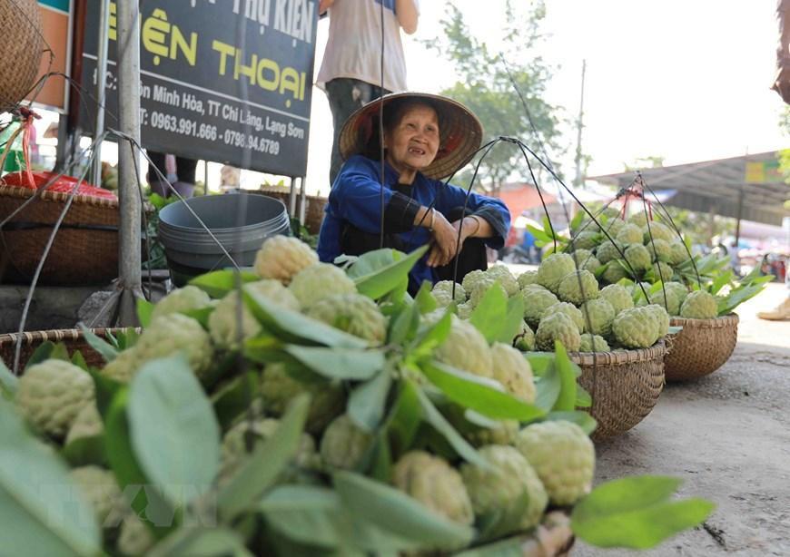 Lạng Sơn chủ động quảng bá cho sản phẩm đặc sản na 'Chi Lăng' Ảnh 6