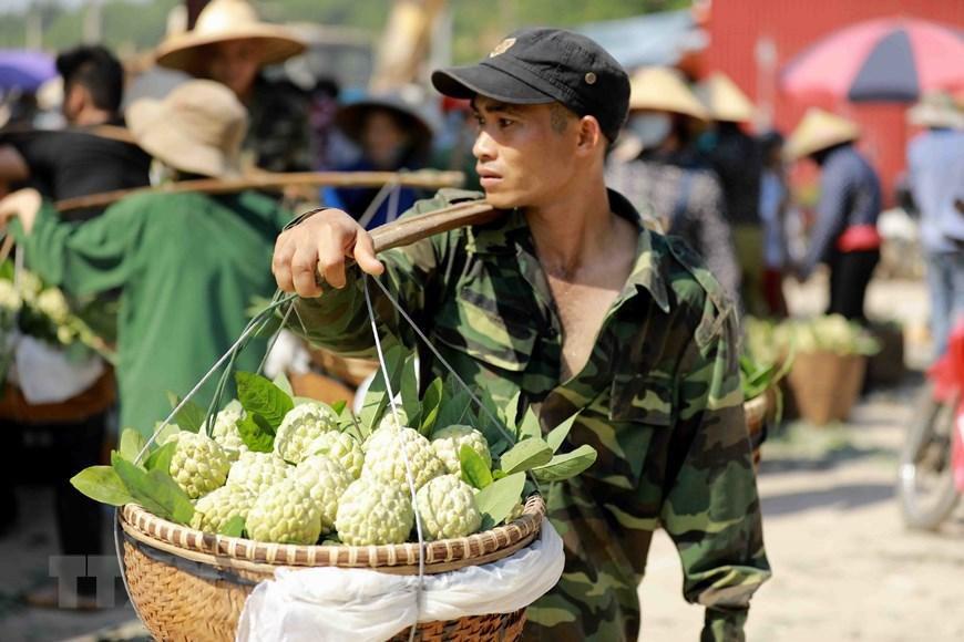 Lạng Sơn chủ động quảng bá cho sản phẩm đặc sản na 'Chi Lăng' Ảnh 7