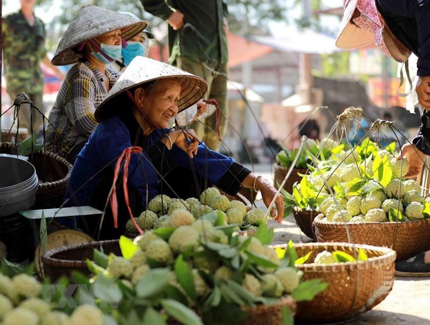 Lạng Sơn chủ động quảng bá cho sản phẩm đặc sản na 'Chi Lăng' Ảnh 12