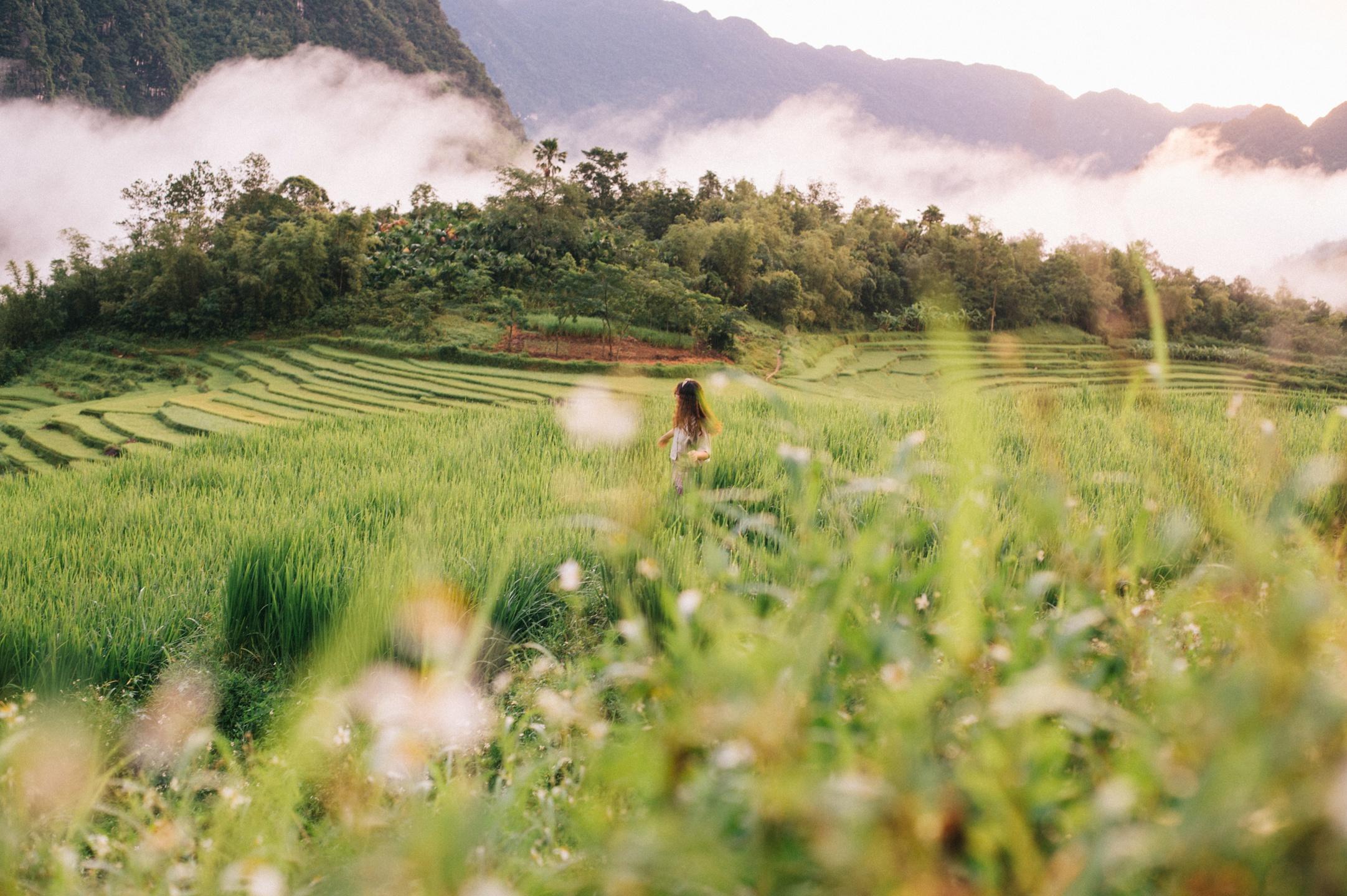 Tháng 9, đến Pù Luông ngắm lúa Ảnh 5