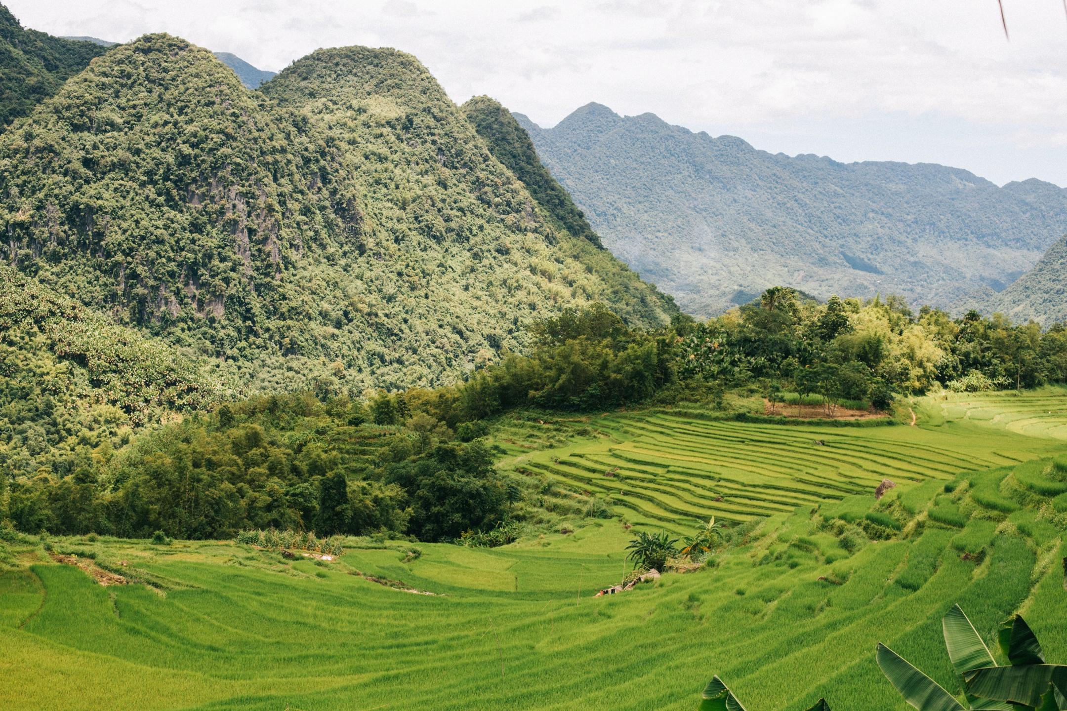 Tháng 9, đến Pù Luông ngắm lúa Ảnh 4